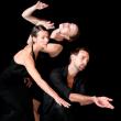 Spectacle T. LEBRUN - LIED BALLET à ANGERS @ QUAI 900 - Billets & Places