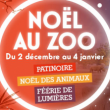 Noël au Zoo - Soirée patinoire