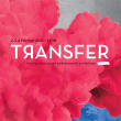 FESTIVAL TRANSFER - PASS DAY 2+3 > 19h-5h