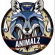 Concert ANIMALZ à PARIS @ TERMINAL 4 - Billets & Places